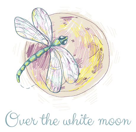 Over the white moon