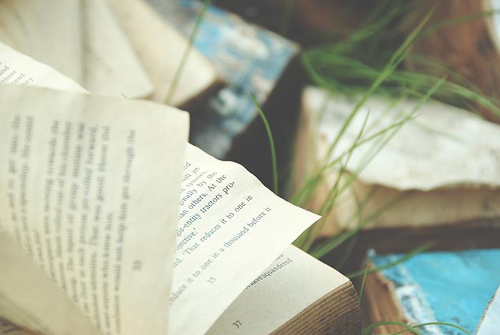 Mis antojos literarios: antes de Asia