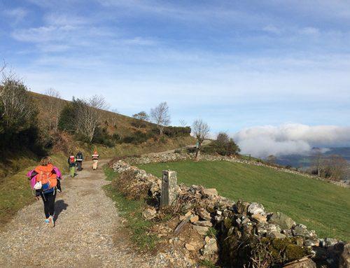 El Camino de Santiago, por qué decir «sí»