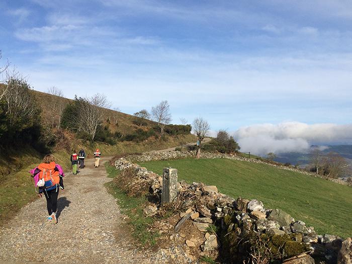 Imagen de un tramo del Camino de Santiago.